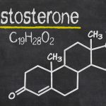 How does Testosterone Affect Muscle Growth and Increase Strength?