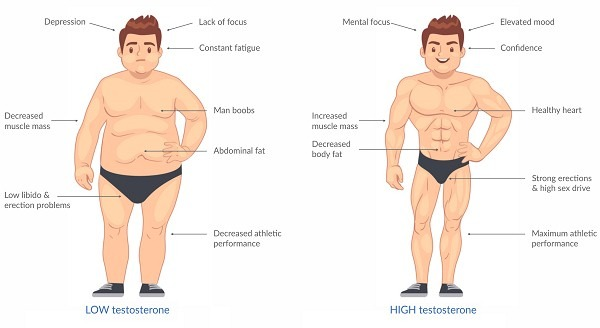 testosterone and weight