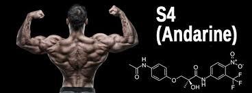 Andarine for bodybuilding