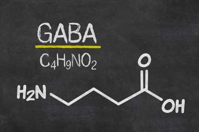 GABA for HGH